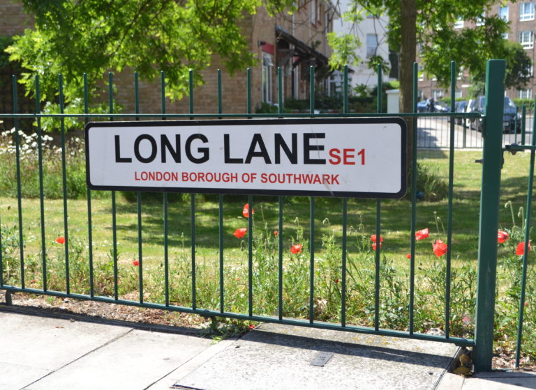 Long Lane and poppies2